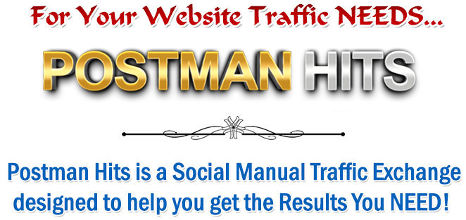 for your website traffic needs